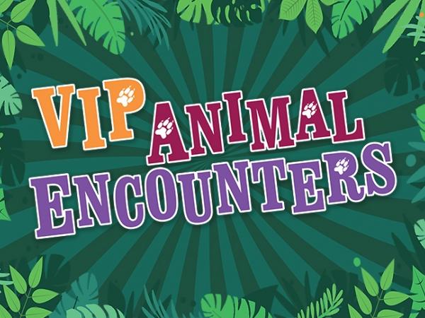 VIP Animal Encounters
